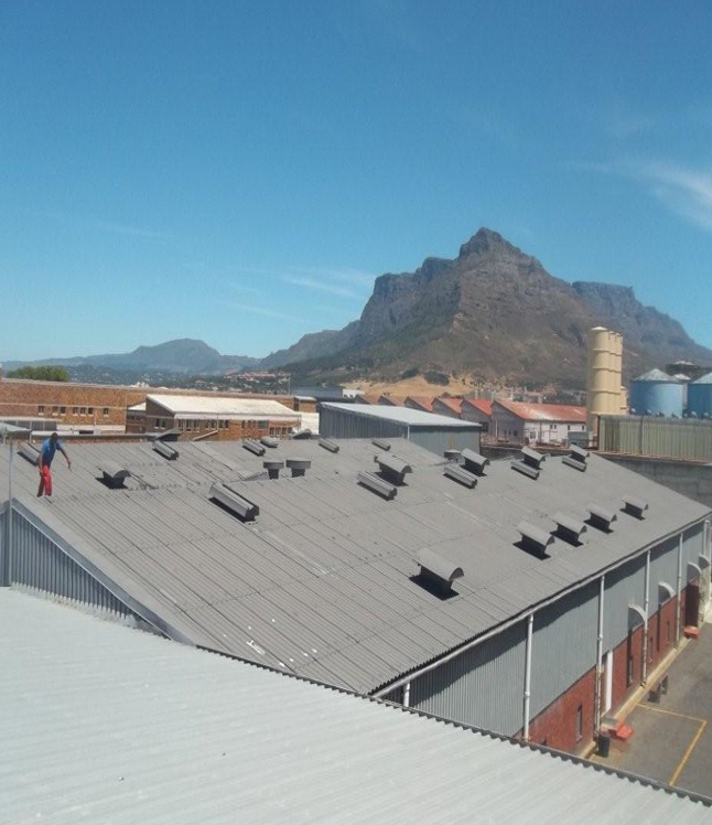 Professional Roofing Contractors Company in Cape Town Western Cape